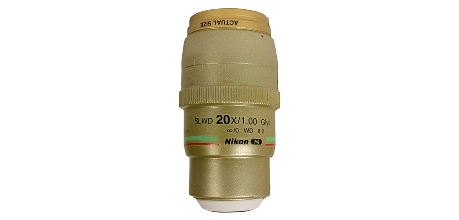 Nikon Microscope Lens Squishy