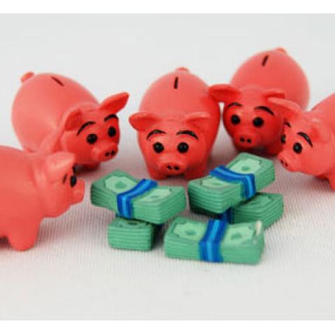 Pigs eating money